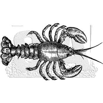 Tim Holtz Rubber Stamp LOBSTER Stampers Anonymous K3-3035