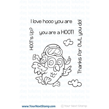 Your Next Stamp HOOT'S UP Clear CYNS581