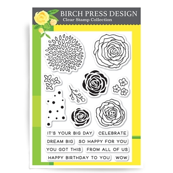 Birch Press Design TIME TO CELEBRATE Clear Stamps CL8119