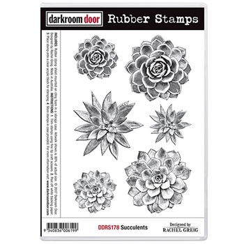 Darkroom Door Cling Stamp SUCCULENTS Rubber UM DDRS178