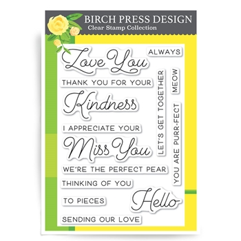 Birch Press Design LOVE AND MISS YOU Clear Stamps CL8123