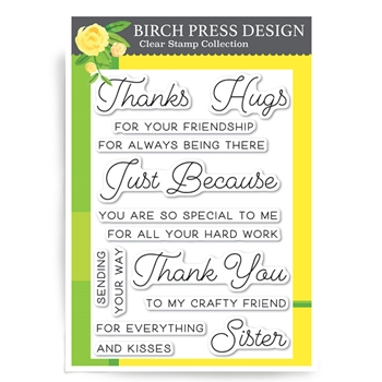 Birch Press Design JUST BECAUSE Clear Stamps CL8124