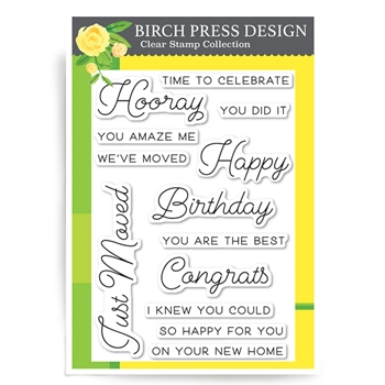 Birch Press Design HOORAY FOR EVERYTHING Clear Stamps CL8125