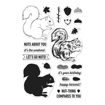 Hero Arts Clear Stamps Color Layering SQUIRREL CM201
