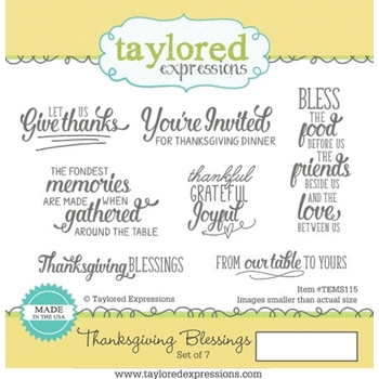 Taylored Expressions THANKSGIVING BLESSING Cling Stamp Set TEMS115