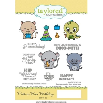 Taylored Expressions PEEK A BOO BIRTHDAY Cling Stamp Set TEMD114