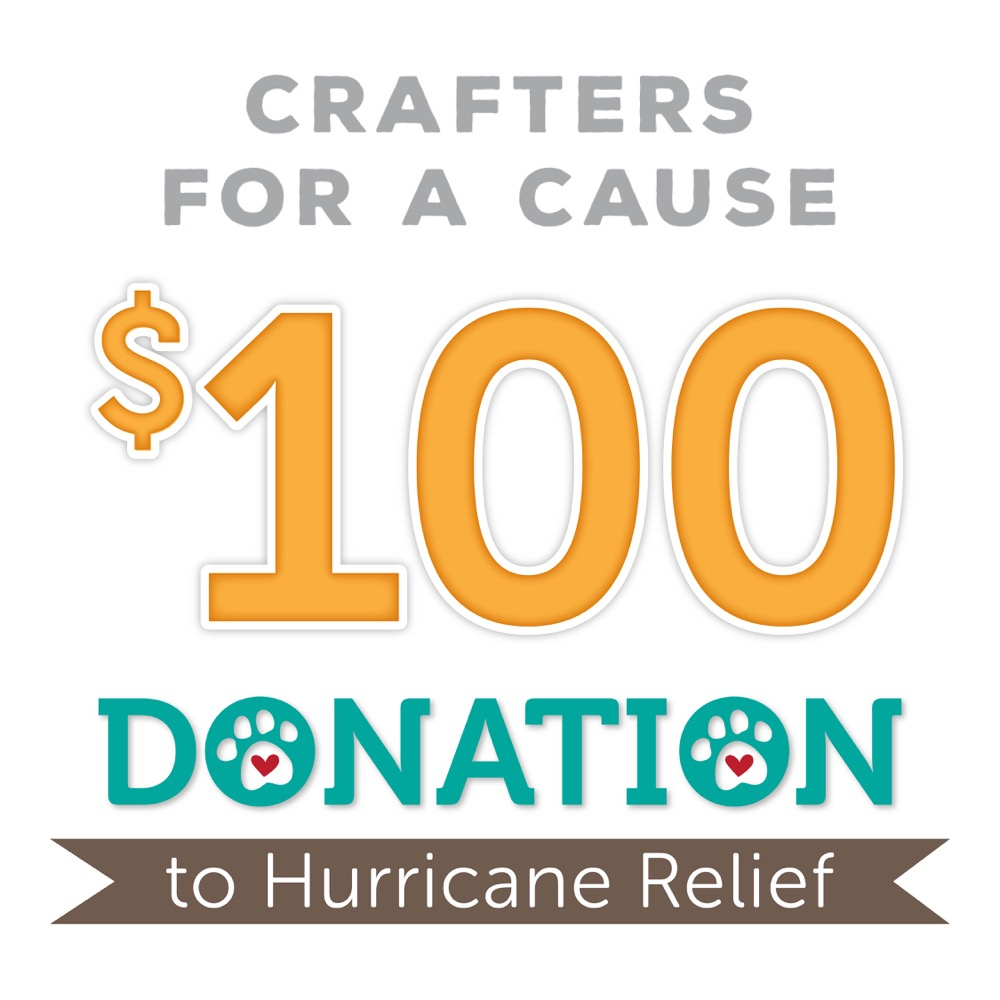 $100 DONATION FOR HURRICANE RELIEF