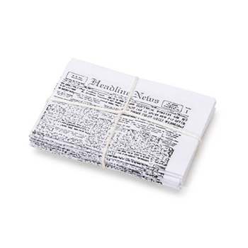 Darice MINI NEWSPAPER BUNDLE Timeless Minis 231849