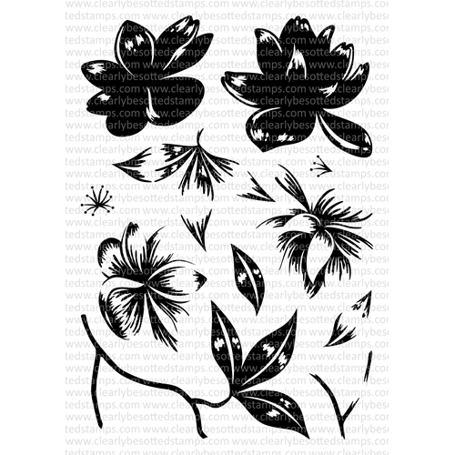 Clearly Besotted MAGNOLIA MOMENTS Clear Stamp Set Preview Image