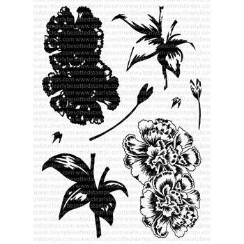 Clearly Besotted CALMING CARNATIONS Clear Stamp Set