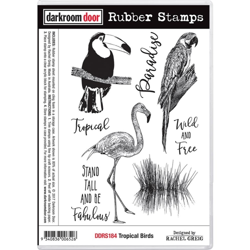 Darkroom Door Cling Stamp TROPICAL BIRDS Rubber UM DDRS184 Preview Image