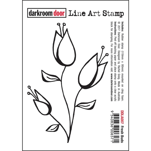Darkroom Door Cling Stamp FRESH BUDS Line Art Rubber UM DDLA007* Preview Image