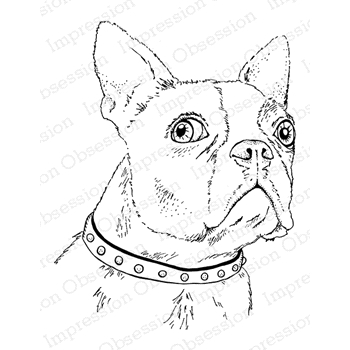 Impression Obsession Cling Stamp BOSTON TERRIER F7901