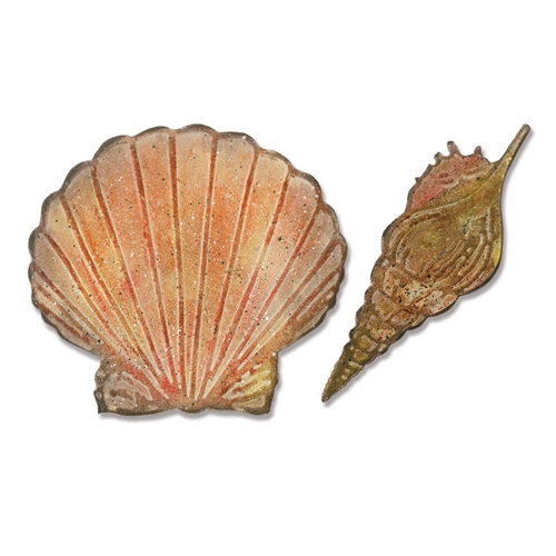 Tim Holtz Sizzix SEASHELLS Bigz Die With Texture Fades 662706 Preview Image