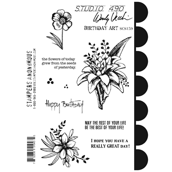 Wendy Vecchi Cling Rubber Stamps BIRTHDAY ART Studio 490 SCS159*