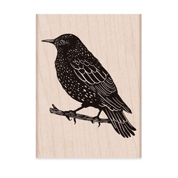Hero Arts Rubber Stamp STARLING ON BRANCH H6283