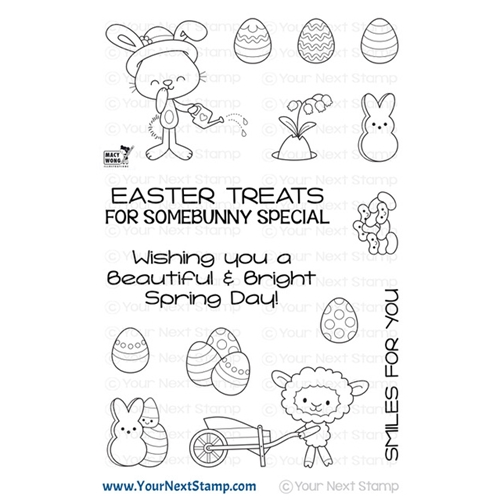 Your Next Stamp SPRING TREATS Clear cyns632 Preview Image