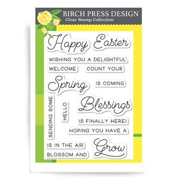 Birch Press Design SPRING BLESSINGS Clear Stamps cl8130
