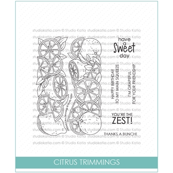 Studio Katia CITRUS TRIMMINGS Clear Stamps stks042
