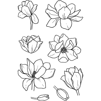 Jane's Doodles MAGNOLIA Clear Stamp Set 743290