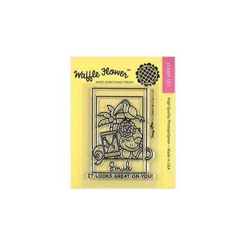 Waffle Flower PICTURE PERFECT Clear Stamp Set 271177