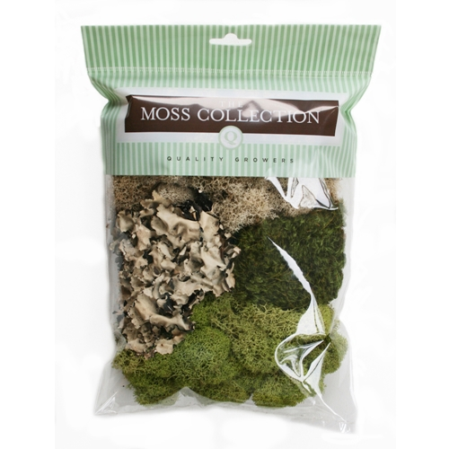 The Moss Collection VARIETY PACK Embellishment 07040 Preview Image