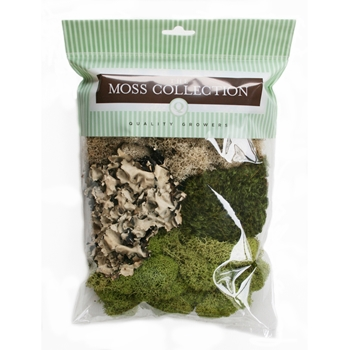 The Moss Collection VARIETY PACK Embellishment 07040