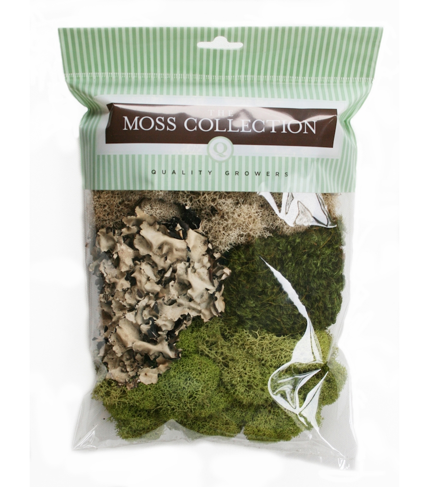 The Moss Collection VARIETY PACK Embellishment 07040 zoom image