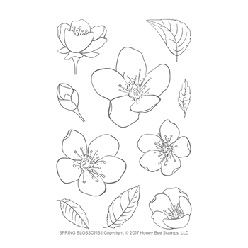 Honey Bee SPRING BLOSSOMS Clear Stamp Set hbst-101