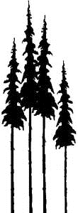 Tim Holtz Rubber Stamp TALL TREES Pine Stampers Anonymous P3-1373 zoom image