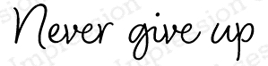 Impression Obsession Cling Stamp NEVER GIVE UP B20504