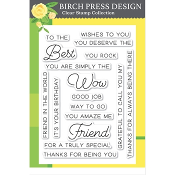 Birch Press Design BEST FRIEND Clear Stamps cl8132