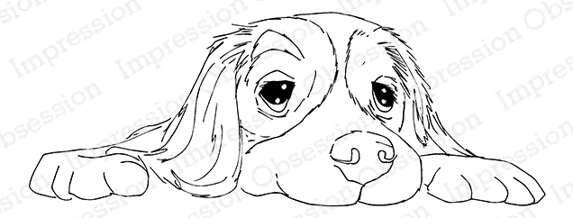 Impression Obsession Cling Stamp FLOPPY PUP E13728 zoom image