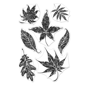 Hero Arts Clear Stamps TEXTURED LEAVES CM301