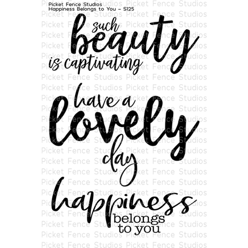 Picket Fence Studios HAPPINESS BELONGS TO YOU Clear Stamp Set s125 Preview Image