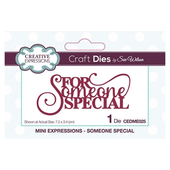 Creative Expressions SOMEONE SPECIAL Sue Wilson Mini Expressions Die Set cedme025