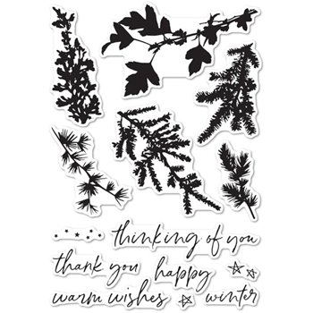 Memory Box Clear Stamps WINTER GREENERY Clear Stamps cl5235