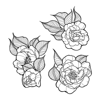 SBS-183 Spellbinders PEONIES BUNDLE Cling Stamps