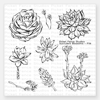 Picket Fence Studios SUCCULENT BLOSSOMS Clear Stamp  Setf114