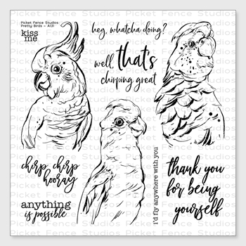 Picket Fence Studios PRETTY BIRDS Clear Stamp Set a131