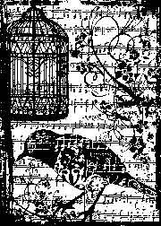 Tim Holtz Rubber Stamp BIRDSONG P4-1487 Stampers Anonymous zoom image