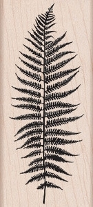 Hero Arts Rubber Stamp SILHOUETTE FERN K5314 Preview Image