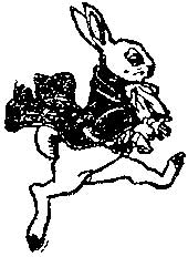 Tim Holtz Rubber Stamp RABBIT Easter Spring Stampers Anonymous K2-1540 Preview Image