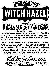 Tim Holtz Rubber Stamp WITCH HAZEL M3-1565 Stampers Anonymous Preview Image