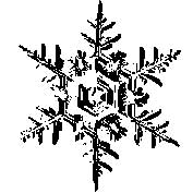 Tim Holtz Rubber Stamp SNOWFLAKE 2 Two H2-1585 Stampers Anonymous