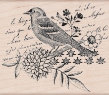 Hero Arts BIRD COLLAGE Rubber Stamp K5503