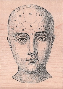 Stampers Anonymous Rubber Stamp PHRENOLOGY HEAD u1-1119