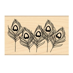 Penny Black Rubber Stamp FEATHERS 4171K