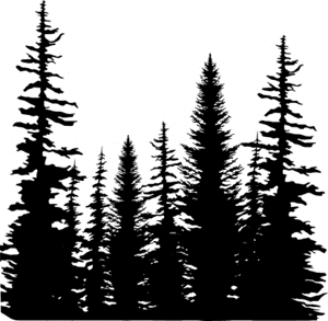 Impression Obsession Cling Stamp PINE TREES CC101 Preview Image