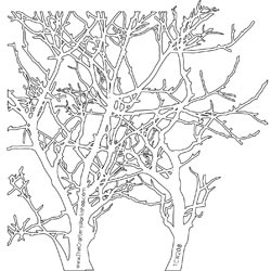 The Crafter's Workshop MINI BRANCHES 6 x 6 Template TCW208s